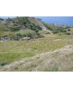 Terreno Agricolo Reggio Calabria -  Pellaro - Bocale